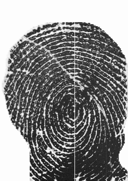 Lines in Fingerprint